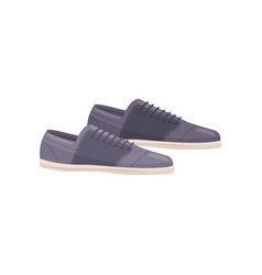 Blue casual shoes with laces male footwear pair vector