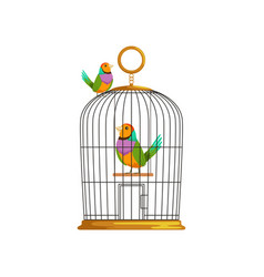 Cartoon couple of multi-colored tropical birds vector