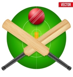 Cricket ball and wooden vector