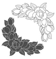 Flowering magnolia branches vector