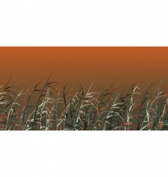 Harvest background vector