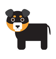 Isolated cute dog vector