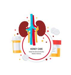 kidney care set vector image