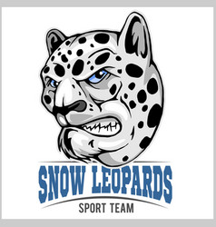 snow leopard mascot vector image vector image
