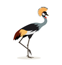 african animal beautiful colorful crowned crane vector image