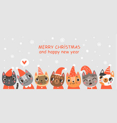 cats christmas card vector image