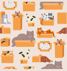 Cats in cardboard transportation boxes cartoon vector