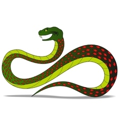 colred snake vector image