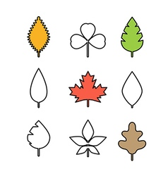 Different leaf Simple line design vector image