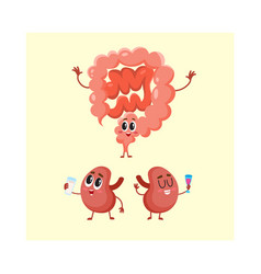 funny smiling human bowels and kidneys characters vector image