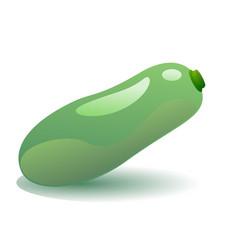 green zucchini vector image