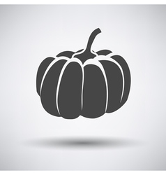 Pumpkin icon on gray background vector