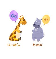 isolated alphabet letter g-giraffeh-hippo vector image