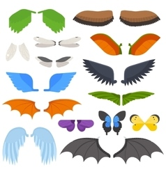 Wings isolated vector image