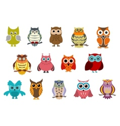 Cartoon cute owl birds vector image vector image
