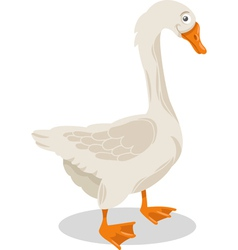 goose farm bird cartoon vector image