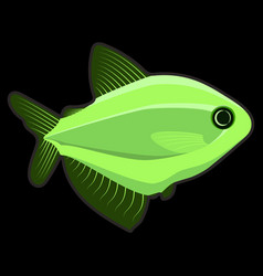 light green fish on black background vector image
