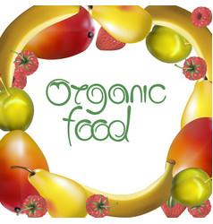 organic food sign vector image