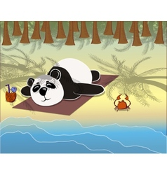 panda lying on the beach vector image