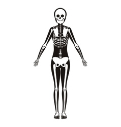 silhouette woman system bone with bone vector image