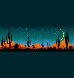 Starry night over mexican desert vector