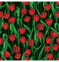 tulip pattern on black vector image