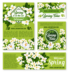 spring floral design for holiday greetings vector image