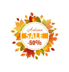 Autumn Sale - Colorful Autumn Leaves Background vector image
