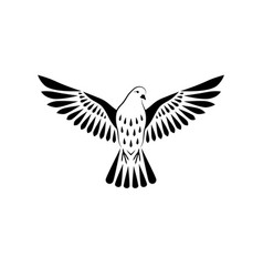 engraving stylized dove on white background vector image