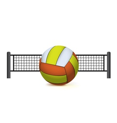 volleyball and net isolated on white vector image