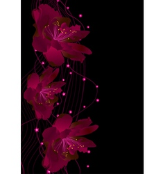 red flowers on black vector image