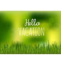 green grass hello vacation vector image vector image