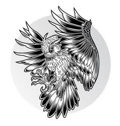 Bird owl wing black fly vector