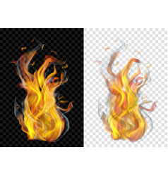 burning campfire with smoke vector image