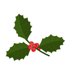 c with berry and leaves christmas symbol vector image