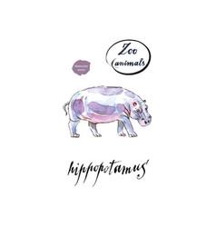 common hippopotamus in watercolor vector image