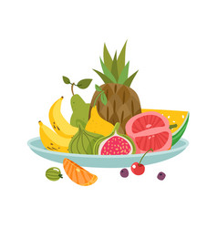 fruits plate dinner bowl dish fruit lunch vector image
