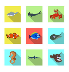 isolated object of sea and animal icon set of sea vector image