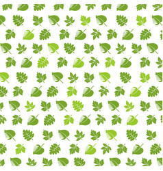 spring background with green leaves vector image