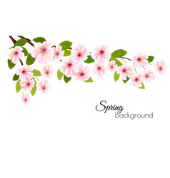 spring nature background with a pink blooming vector image