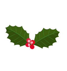 christmas plant symbol holly berry vector image
