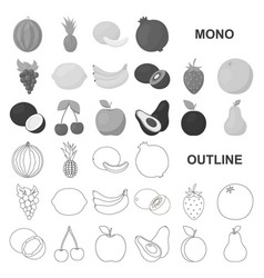 Different fruits monochrom icons in set collection vector