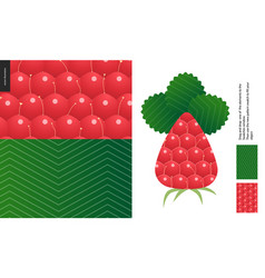 Food patterns fruit raspberry vector