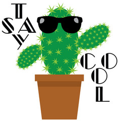 funny cactus vector image