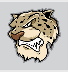 leopard head in cartoon style vector image