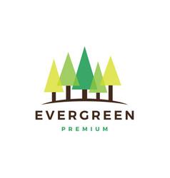 pine evergreen fin hemlock logo icon vector image