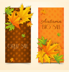 seasonal autumn sale vertical banners vector image