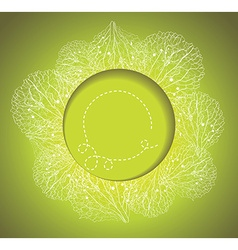 Spring background with grass and flowers petals vector image