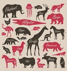 Animal alphabet poster for children vector image