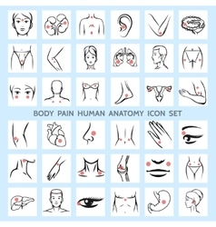Body pain human anatomy icons vector